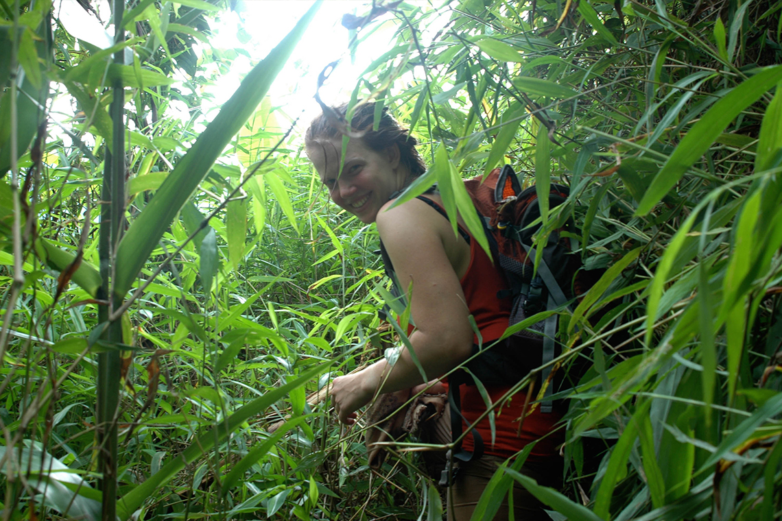 Trekking through thick Plants near Nong Khiaw